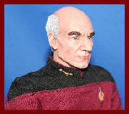 picard , next generation , star trek , stewart , science fiction